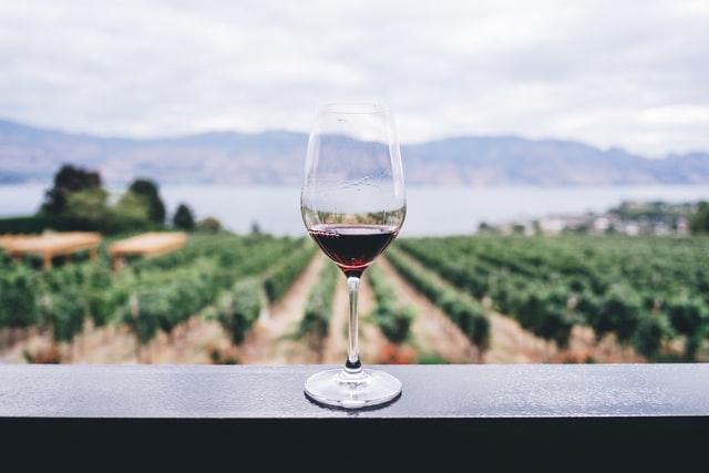 wijn portugal